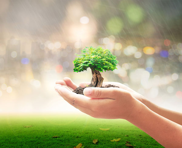 Environmental Insurance Coverage